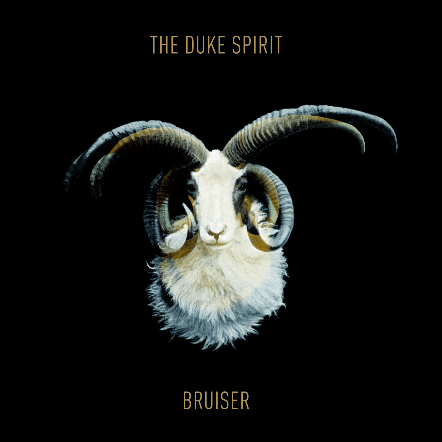 The Duke Spirit Release 'Bruiser' Deluxe In North America