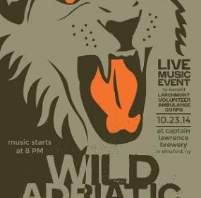 Wild Adriatic charity concert poster 2014