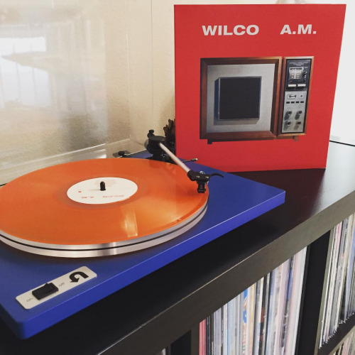 Welcome Wilco